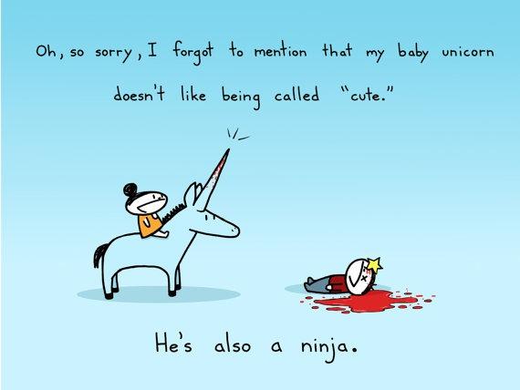 Baby Ninja Unicorn