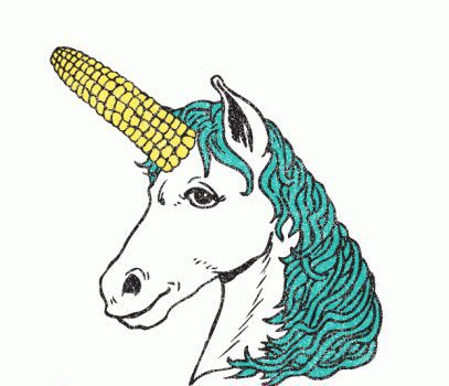 Why Are Unicorns Called Unicorns