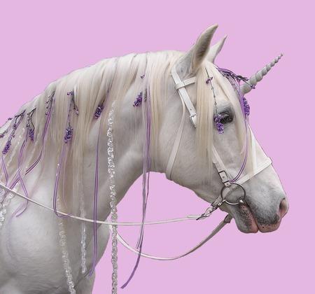 Fantasy Unicorn