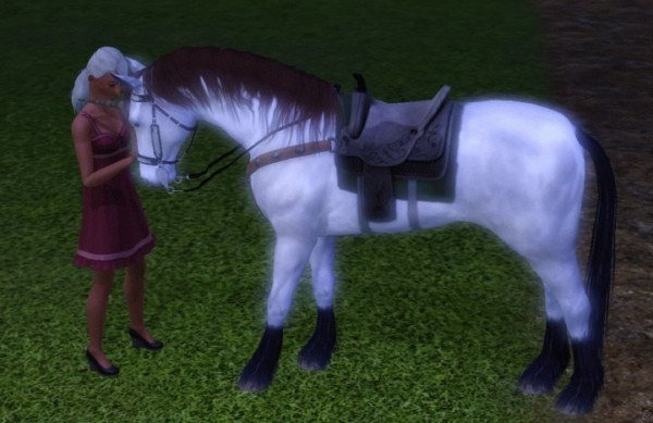 The Sims 3 Unicorn Guide  Pets Expansion Pack