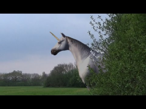 Unicorn Attack Caught On Camera (video) – Covered Truths