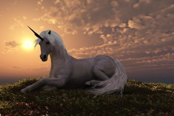 All Things Unicorn » Coffee Roasters Blog