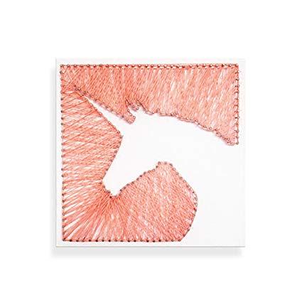 Amazon Com  E&m Pin And Thread Art Unicorn String Art Kits For