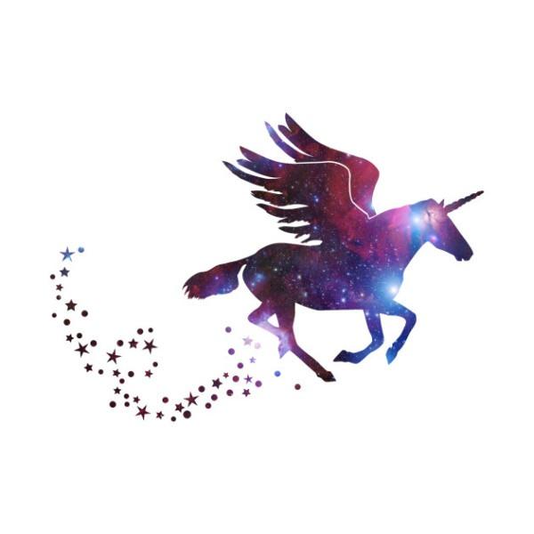 Flying Unicorn Galaxy