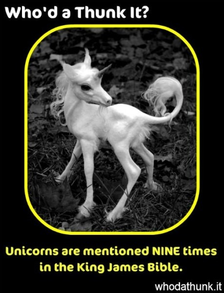 Where In The Bible Does It Talk About Unicorns