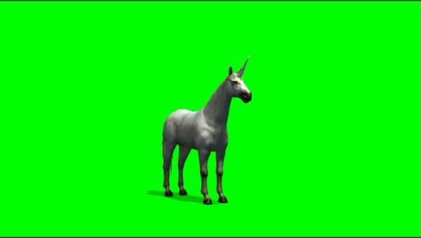 Unicorn Fairytale Stock Video Footage