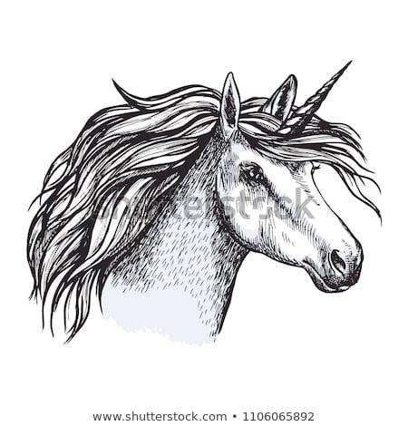 Unicorn Head Sketch Magic Horse Horn Stock Vector (royalty Free