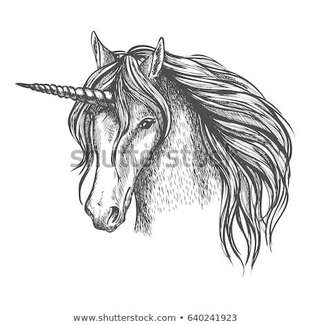 Unicorn Head Sketch Mythic Fantasy Equine Stock Vector (royalty