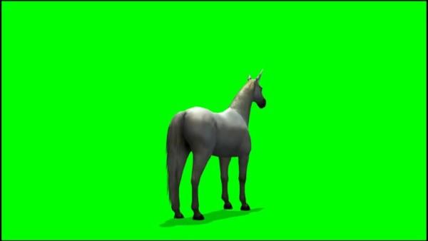 Unicorn Horse Graze