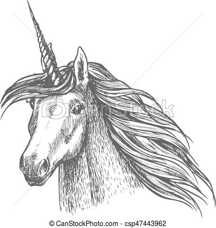 Unicorn Magic Horse Head Sketch  Unicorn Horse Head Sketch  Magic