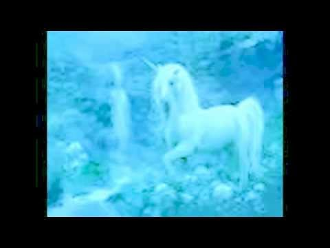 Unicorn Spell For Horses Ponies Only