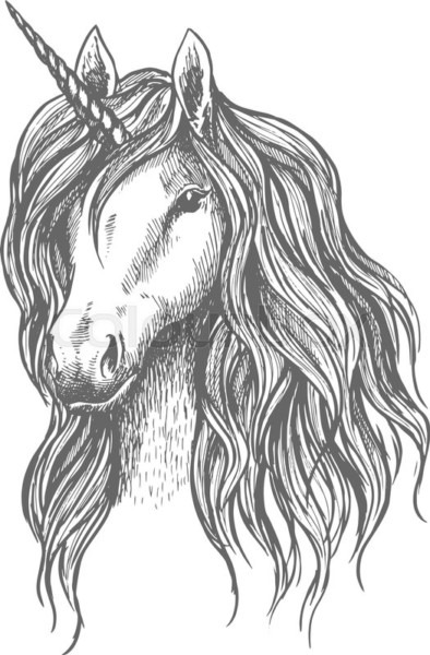 Unicorn Vector Sketch  Vector Sign Of Mythical Horse Head With