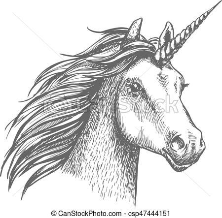 Unicorn Vector Sketch Isolated Head  Unicorn Head  Mythical