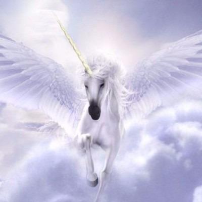Unicorns Fly Forward