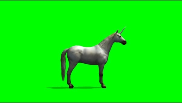 White Unicorn Horse On Green Stock Footage Video (100  Royalty