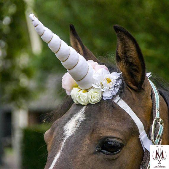 White Unicornhorn, Horse Costume, Fantasy, Unicorn White, Photo