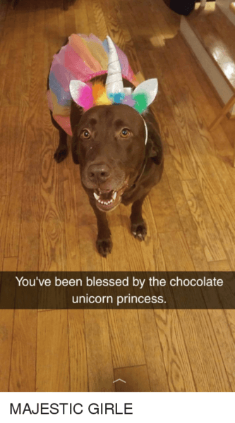 You've Been Blessed By The Chocolate Unicorn Princess
