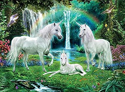 Amazon Com  Unicorns Rainbow And Unicorn Family Jigsaw Puzzle