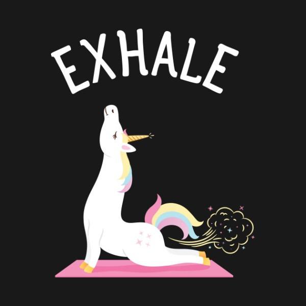 Exhale Yoga Unicorn Yogi