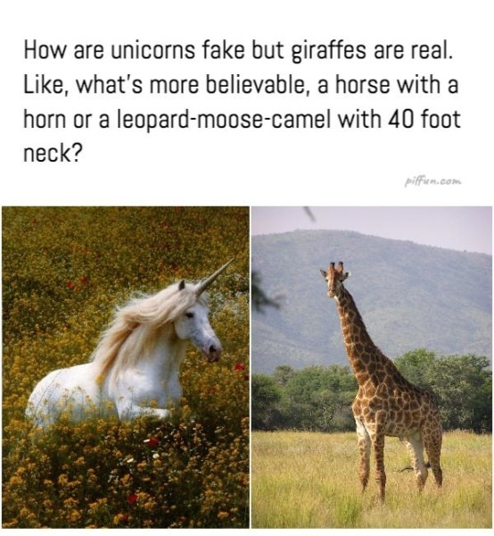 How Are Unicorns Fake But Giraffes Are Real