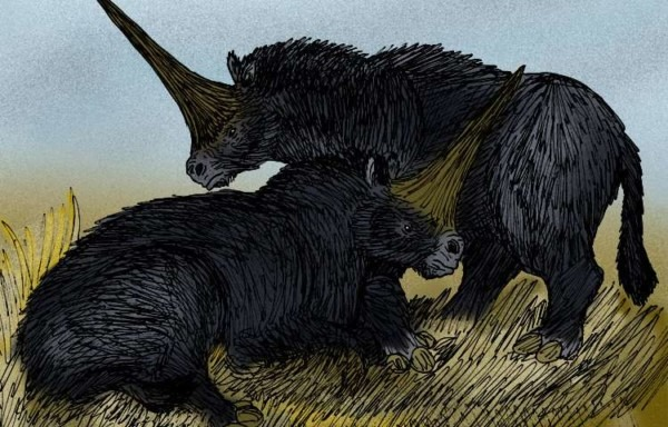Humans, 'unicorns' May Have Walked Earth At Same Time  Study