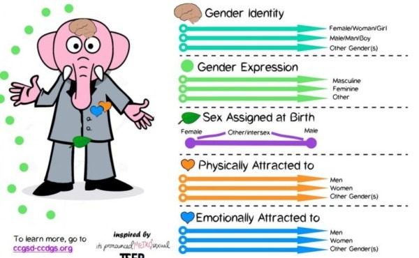 The Jackson Press – Transgender Activists  'gender Unicorn' Is