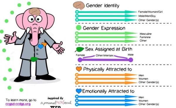 Transgender Activists  'gender Unicorn' Is Passé; Time For The