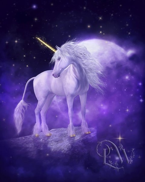 Unicorn Art Print White Unicorn Art Fantasy Unircorn Art