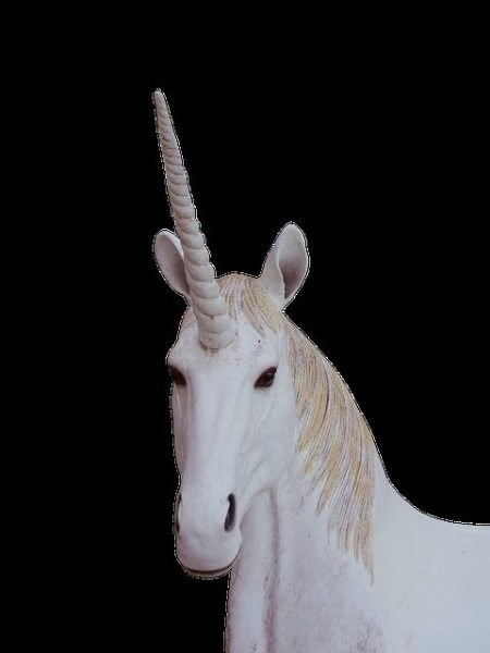 Unicorn Dream Meaning