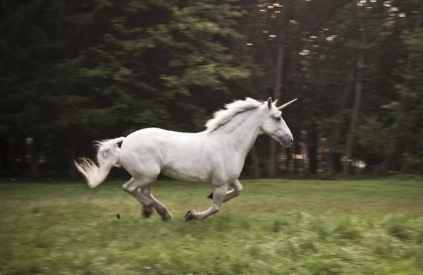 Unicorn Dream Symbol