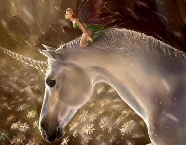 Unicorns And Fairies