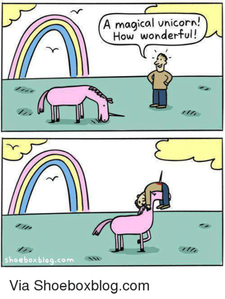 Hoebox Blogcom A Magical Unicorn! How Wonderful! Via