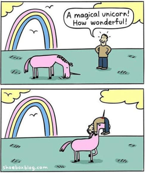 Shoebox Blogcom A Magical Unicorn How Wonderful!
