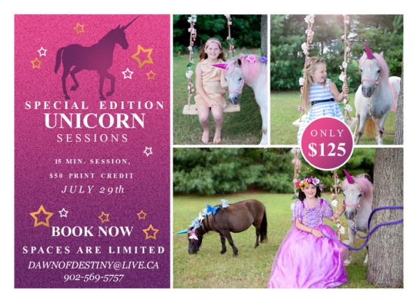 Special Edition Unicorn Sessions » Dawn Of Destiny Photography