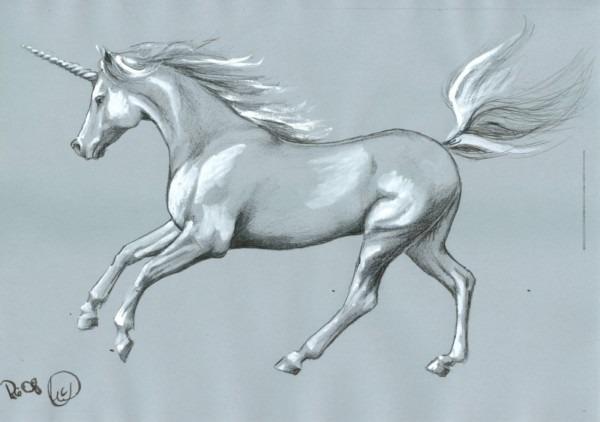 The Mystery Of Unicorn Myths