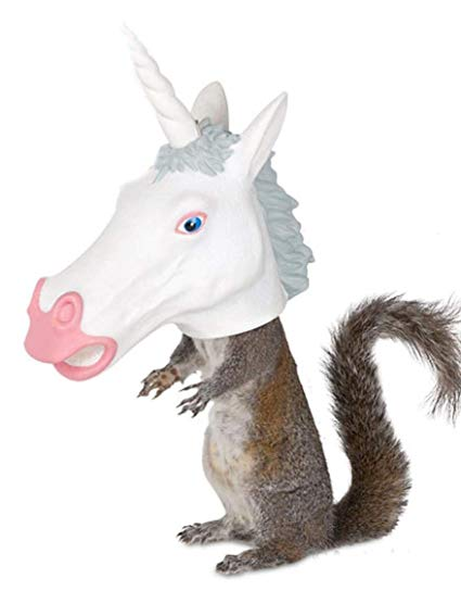 Amazon Com  Unicorn Head Squirrel Feeder By Archie Mcphee  Home