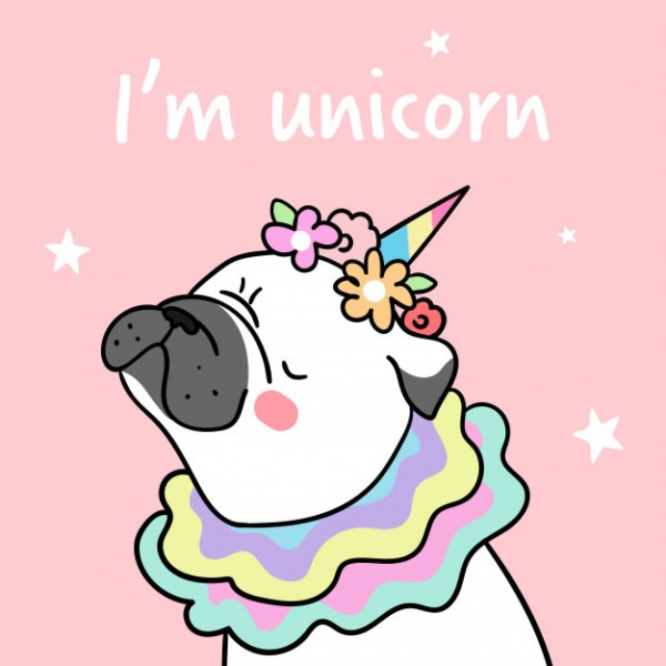 Draw Pug And Flower On Head With Word I Am Unicorn  Vector