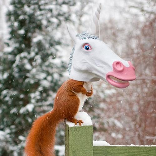 Duncraft Com  Big Unicorn Head Squirrel Feeder
