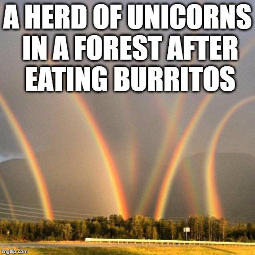 Oh You Silly Unicorns