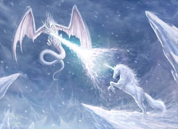 Snow Dragon Vs Unicorn Omg One Obsession With An Older