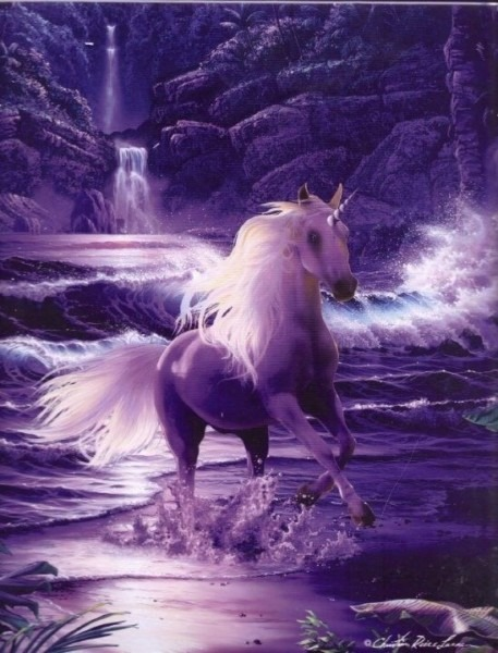 The Unicorn P4 Proper Working With Unicorns As A Spirit Guide