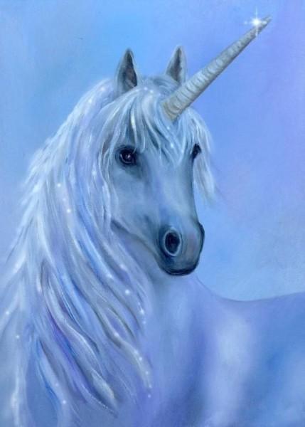 Unicorn  Fantasy I Know It's Not Real But I Just Love Unicorns