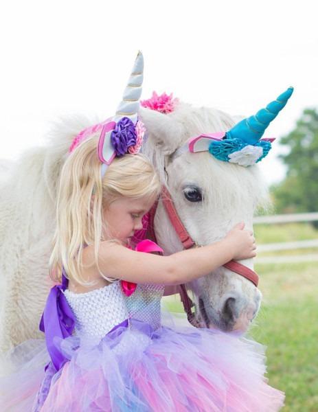 Unicorn Headpiece For A Pony , Horse Costume, Fantasy Unicorn
