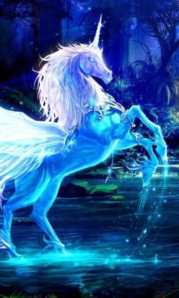 Unicorn Pegasus Wallpapers