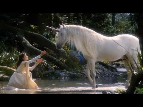 Unicorns Actually Existed! But Not Exactly Like In Fairy Tales