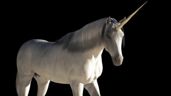 What Does It Mean When Someone Calls You A Unicorn