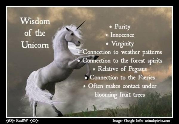 Wisdom Of The Unicorn