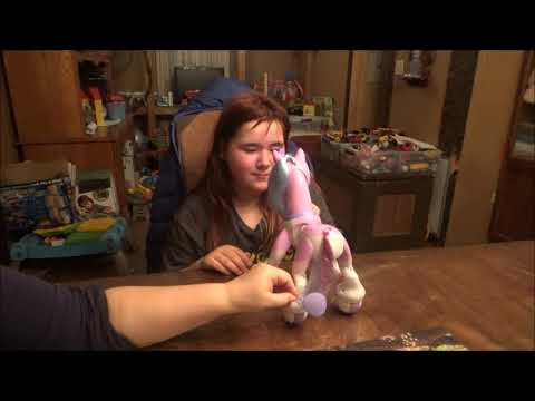 Zoomer Enchanted Unicorn 2018 Review