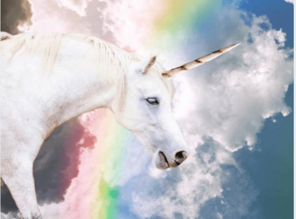 40 Interesting Unicorn Facts
