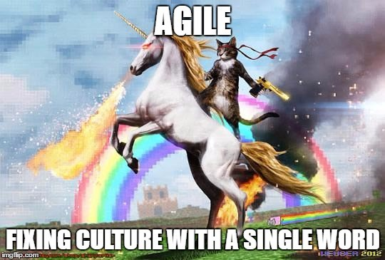 Agile  3 Signs That You May Be Drinking Unicorn Blood